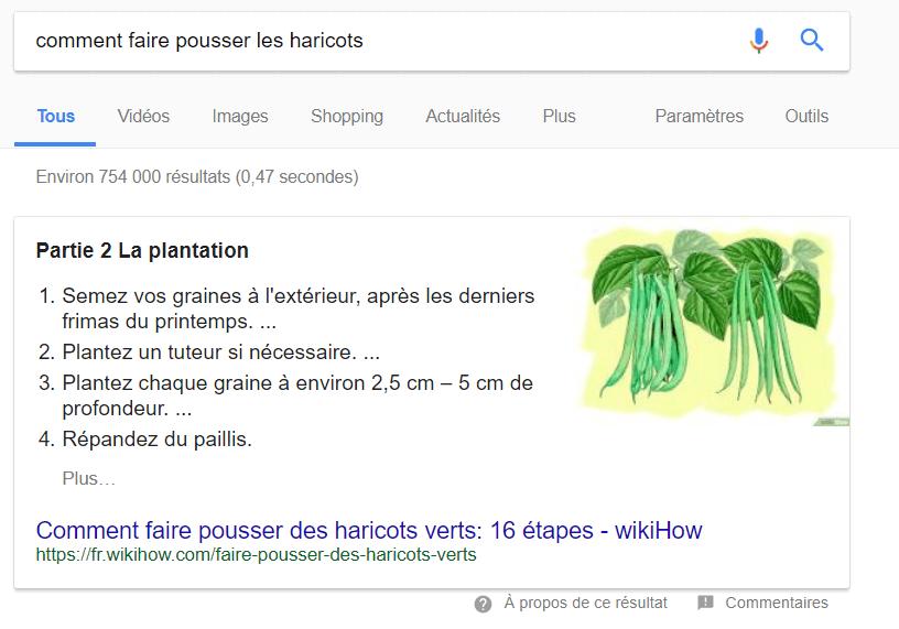 Exemple d'une position zero dans Google