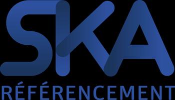 Logo Agence Webmarketing SKA bleu